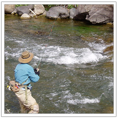 Fly Fishing in Riffles